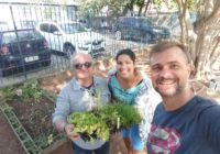 Zona Oeste se destaca no projeto Hortas Escolares e Campo Grande vai ganhar viveiro