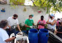 Prefeitura do Rio doa mil tilápias para a comunidade de Urucânia, em Paciência