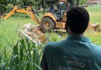 Ação bota abaixo nove estruturas de casas e pequenos prédios em área de proteção ambiental de Guaratiba