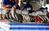 Aprenda cinco truques simples para garantir o melhor peixe para a Semana Santa