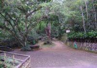 Adolescentes e idosos vizinhos do Parque Natural Municipal do Mendanha podem beneficiar a saúde