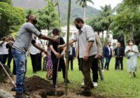 Fazenda Modelo em Guaratiba ganha Fábrica de Árvores