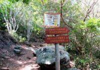 Parque Municipal do Grumari promove colônia de férias