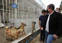 Prefeito visita Centro de Controle de Zoonoses em Santa Cruz e anuncia construção de hospital para animais